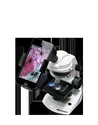 Koi Gadgets